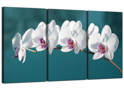 Modern Teal White Orchid Flower Branch Floral Canvas - 3 Set - 125cm - 3115