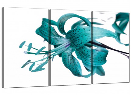 Modern Teal Tiger Lily Flower on White Floral Canvas - 3 Panel - 125cm - 3054