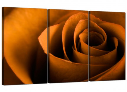 Modern Orange Black Rose Petal Flower Floral Canvas - Set of 3 - 125cm - 3141