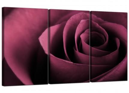 Modern Plum Coloured Rose Petal Flower Floral Canvas - 3 Part - 125cm - 3111