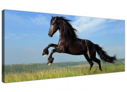 Large Black Jumping Horse in Field Modern Canvas Art - 120cm - 1129