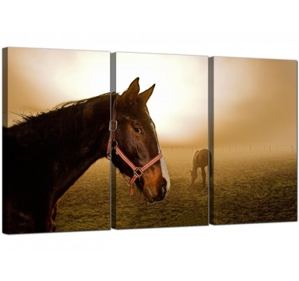 Modern Brown Horse Mare and Foal Sunrise Canvas - 3 Part - 125cm - 3130